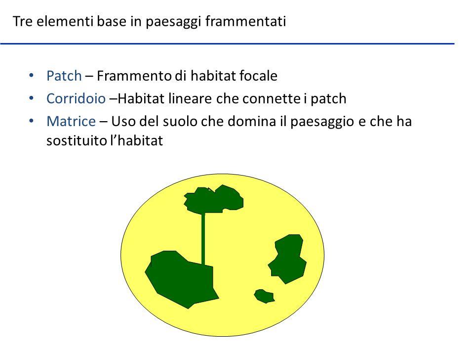 Patch – Frammento di habitat focale Corridoio –Habitat lineare che connette i patch Matrice – Uso del suolo che domina il paesaggio e che ha sostituit