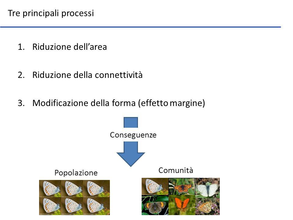 1.Riduzione dellarea 2.Riduzione della connettività 3.Modificazione della forma (effetto margine) Tre principali processi Conseguenze Popolazione Comu