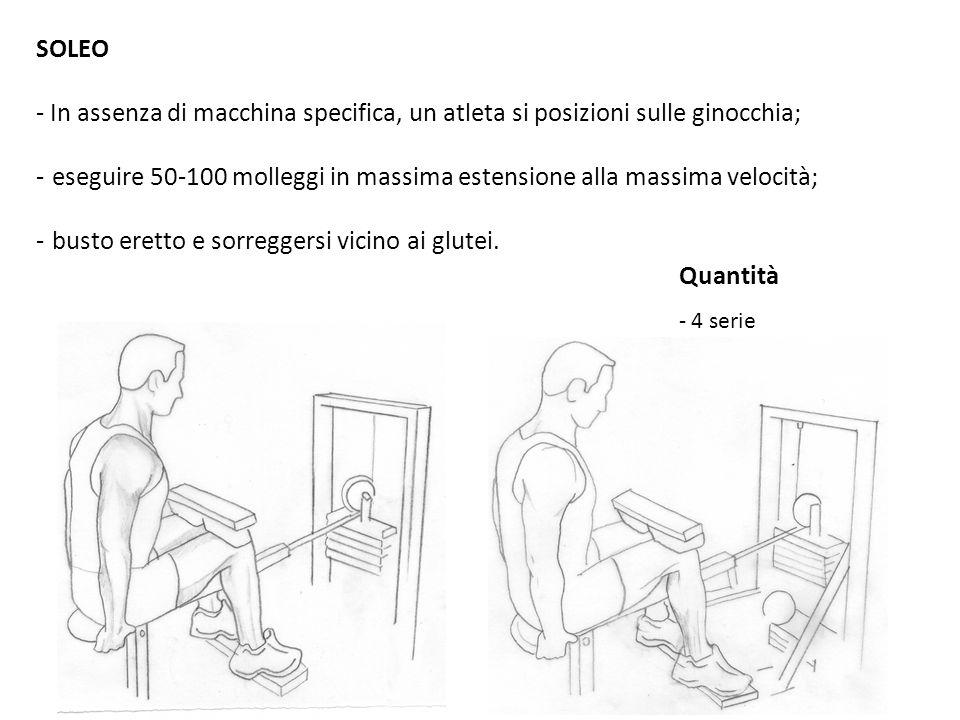 SOLEO - In assenza di macchina specifica, un atleta si posizioni sulle ginocchia; - eseguire 50-100 molleggi in massima estensione alla massima veloci