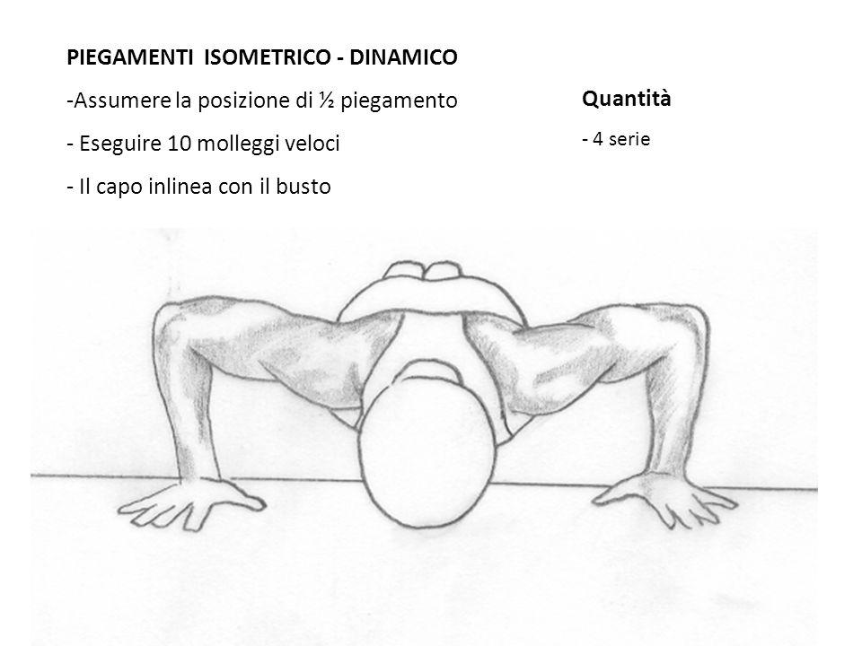 PIEGAMENTI ISOMETRICO - DINAMICO -Assumere la posizione di ½ piegamento - Eseguire 10 molleggi veloci - Il capo inlinea con il busto Quantità - 4 seri