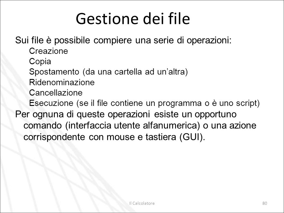 Il Calcolatore80 Gestione dei file Sui file è possibile compiere una serie di operazioni: Creazione Copia Spostamento (da una cartella ad unaltra) Rid