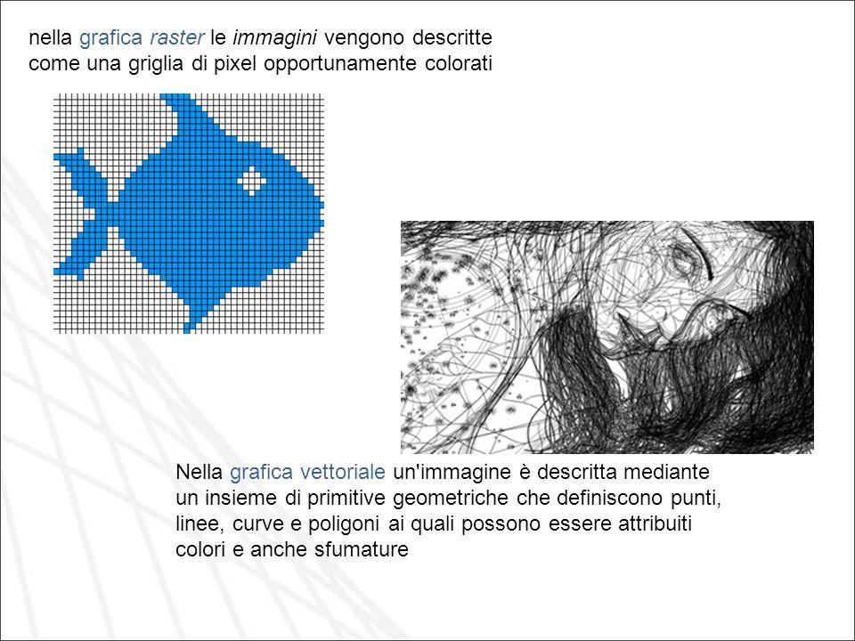 nella grafica raster le immagini vengono descritte come una griglia di pixel opportunamente colorati Nella grafica vettoriale un'immagine è descritta