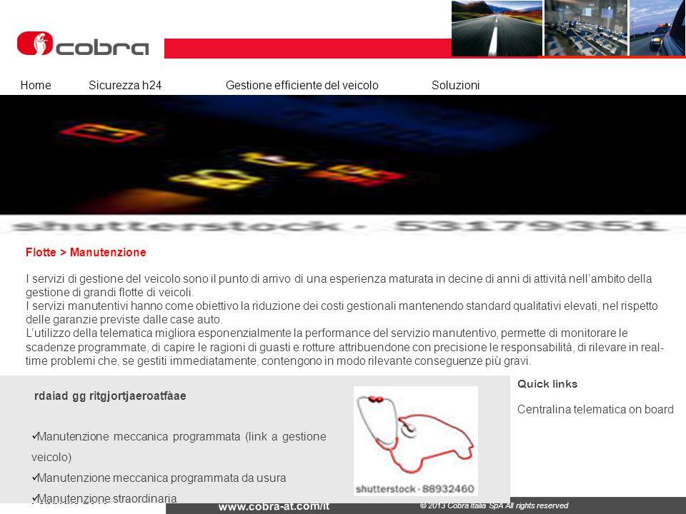 Febbraio 2013 www.cobra-at.com/it © 2013 Cobra Italia SpA All rights reserved Flotte > Manutenzione HomeSicurezza h24Gestione efficiente del veicolo S