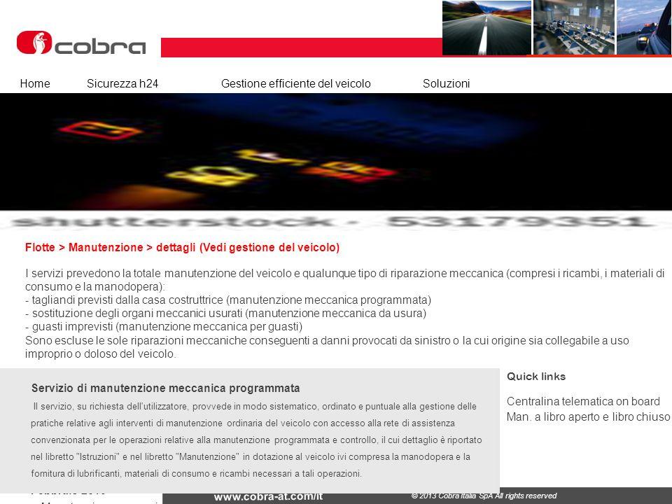 Febbraio 2013 www.cobra-at.com/it © 2013 Cobra Italia SpA All rights reserved Flotte > Manutenzione > dettagli (Vedi gestione del veicolo) HomeSicurez