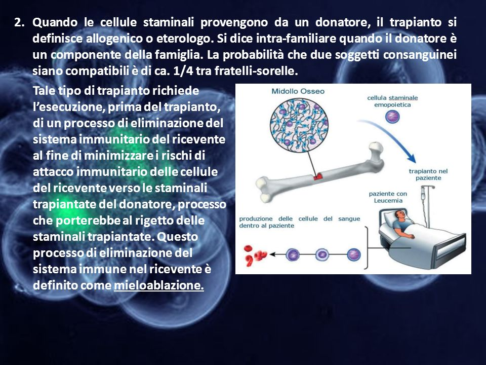 2.Quando le cellule staminali provengono da un donatore, il trapianto si definisce allogenico o eterologo. Si dice intra-familiare quando il donatore