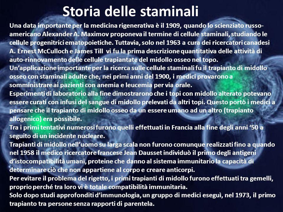 Storia delle staminali Una data importante per la medicina rigenerativa è il 1909, quando lo scienziato russo- americano Alexander A. Maximov proponev
