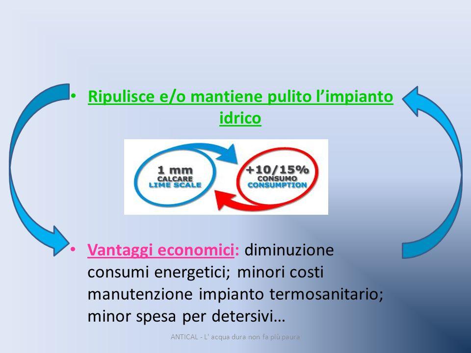 Ripulisce e/o mantiene pulito limpianto idrico Vantaggi economici: diminuzione consumi energetici; minori costi manutenzione impianto termosanitario;