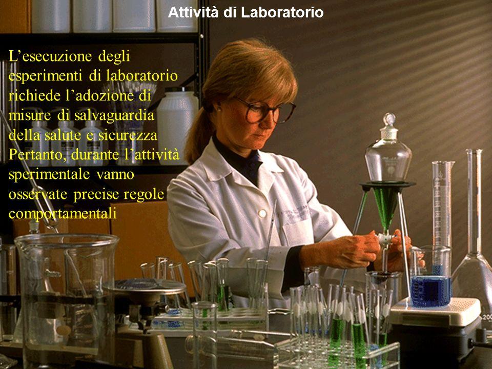 Mirvana Lauria Attività di Laboratorio Lesecuzione degli esperimenti di laboratorio richiede ladozione di misure di salvaguardia della salute e sicure