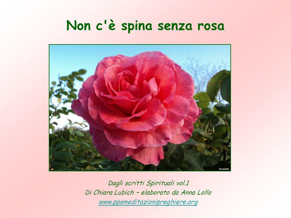 Dagli scritti Spirituali vol.1 Di Chiara Lubich – elaborato da Anna Lollo www.ppsmeditazionipreghiere.org Non c è spina senza rosa