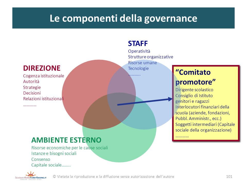 Le componenti della governance © Vietata la riproduzione e la diffusione senza autorizzazione dell'autore Comitato promotore Dirigente scolastico Cons