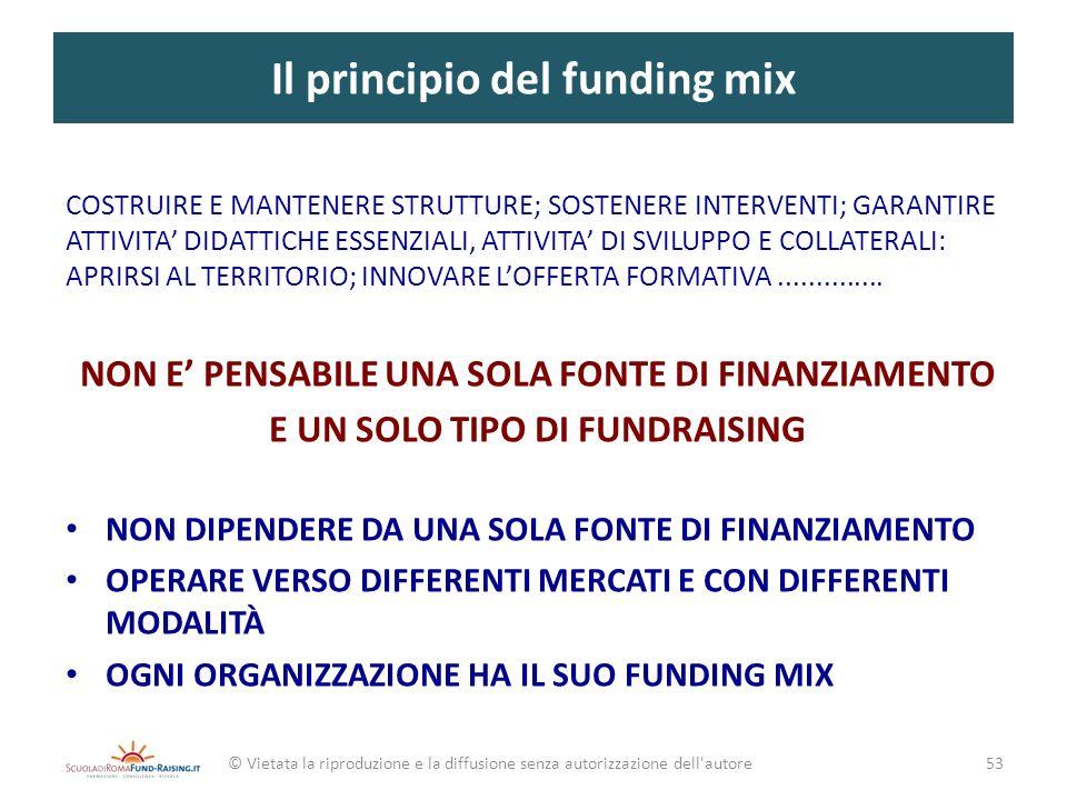 Il principio del funding mix © Vietata la riproduzione e la diffusione senza autorizzazione dell'autore COSTRUIRE E MANTENERE STRUTTURE; SOSTENERE INT