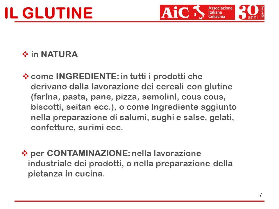 7 IL GLUTINE in NATURA come INGREDIENTE: in tutti i prodotti che derivano dalla lavorazione dei cereali con glutine (farina, pasta, pane, pizza, semol