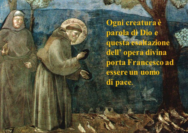 Ogni creatura è parola di Dio e questa esaltazione dell opera divina porta Francesco ad essere un uomo di pace.