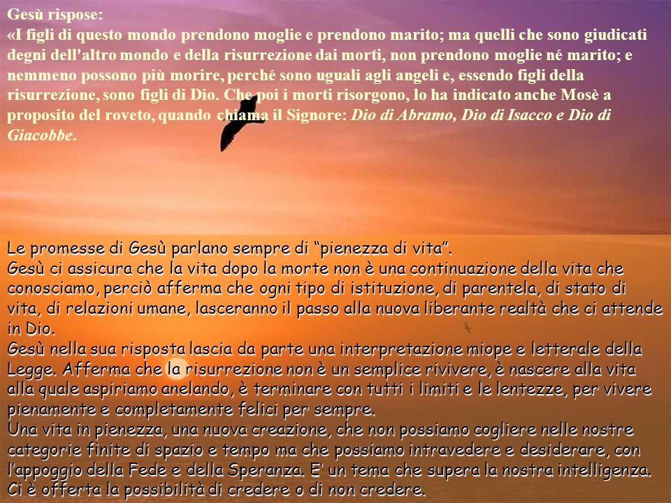 Le promesse di Gesù parlano sempre di pienezza di vita.