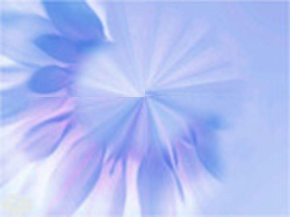 Coscienza e ragione illuminate dalla luce del cuore questo è Amore