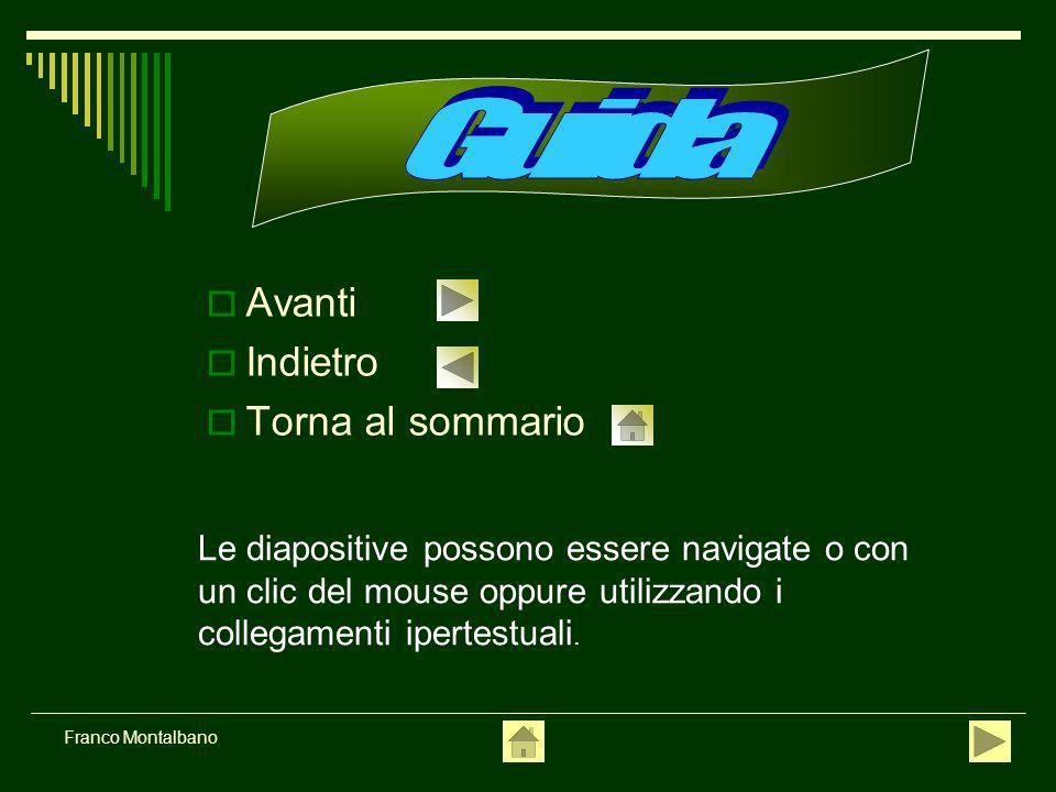 Franco Montalbano Avanti Indietro Torna al sommario Le diapositive possono essere navigate o con un clic del mouse oppure utilizzando i collegamenti ipertestuali.
