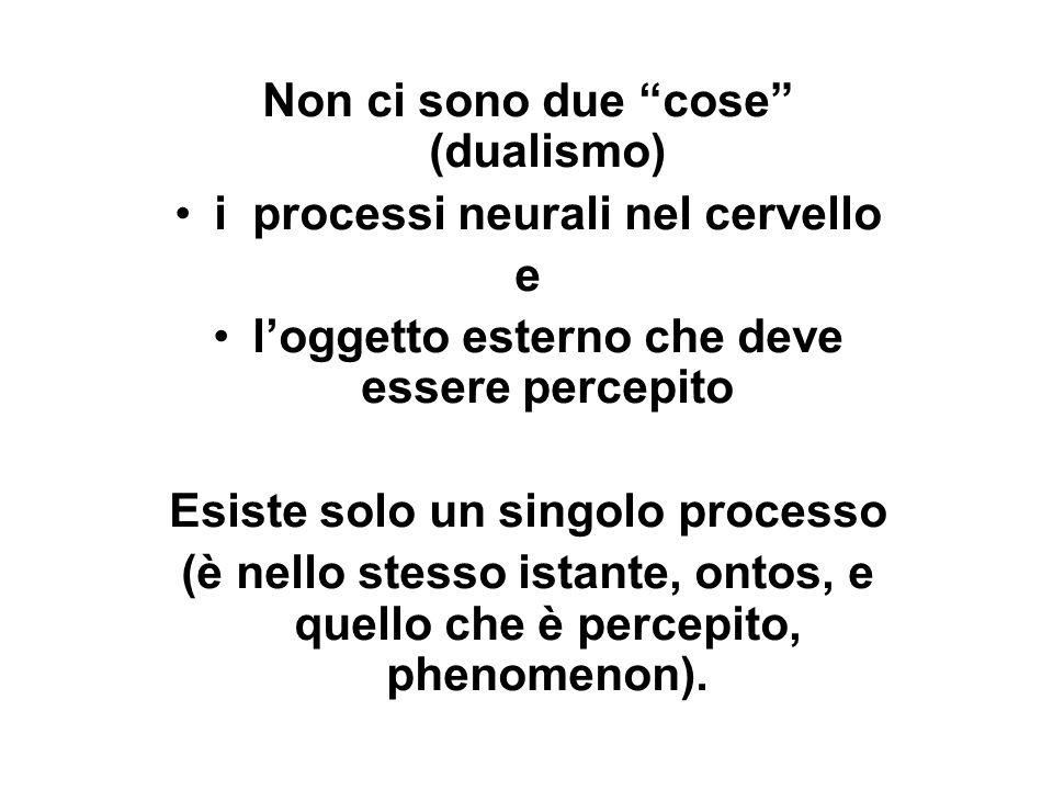 Non ci sono due cose (dualismo) i processi neurali nel cervello e loggetto esterno che deve essere percepito Esiste solo un singolo processo (è nello