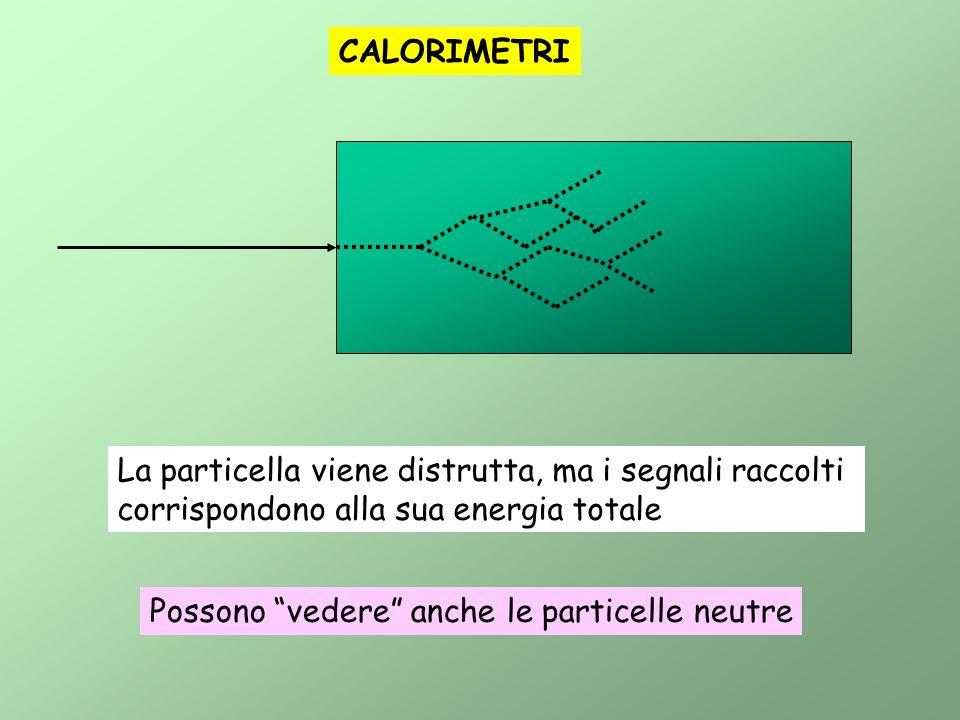 La particella viene distrutta, ma i segnali raccolti corrispondono alla sua energia totale CALORIMETRI Possono vedere anche le particelle neutre