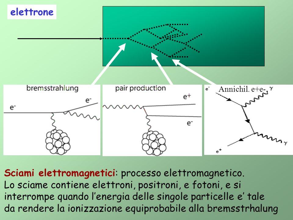 elettrone Sciami elettromagnetici: processo elettromagnetico. Lo sciame contiene elettroni, positroni, e fotoni, e si interrompe quando lenergia delle