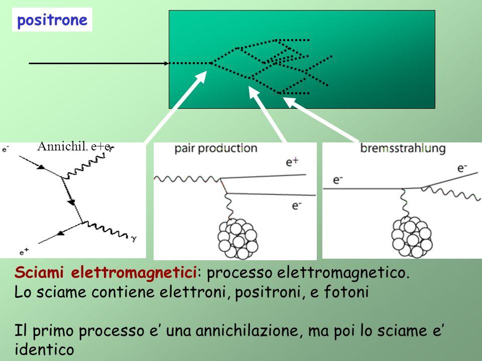 positrone Sciami elettromagnetici: processo elettromagnetico. Lo sciame contiene elettroni, positroni, e fotoni Il primo processo e una annichilazione