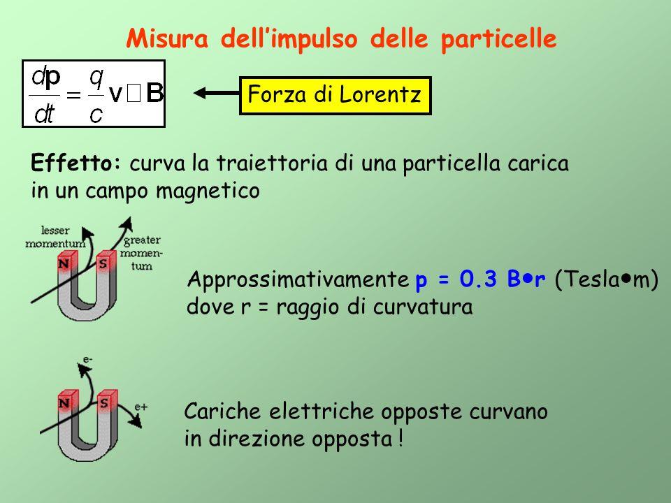 Misura dellimpulso delle particelle Forza di Lorentz Effetto: curva la traiettoria di una particella carica in un campo magnetico Approssimativamente