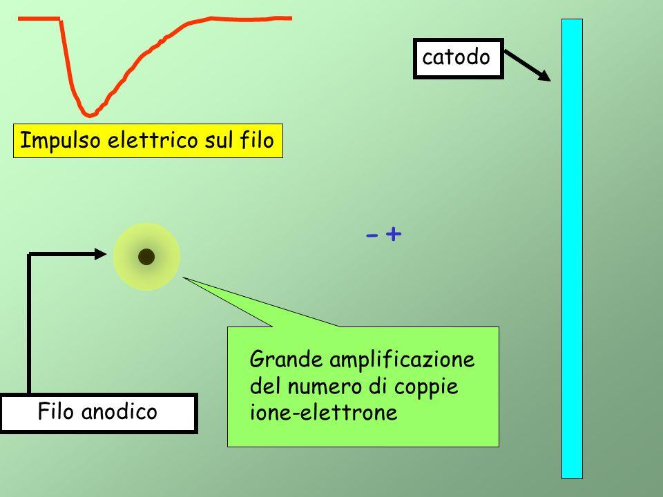 Filo anodico catodo +- Impulso elettrico sul filo Grande amplificazione del numero di coppie ione-elettrone