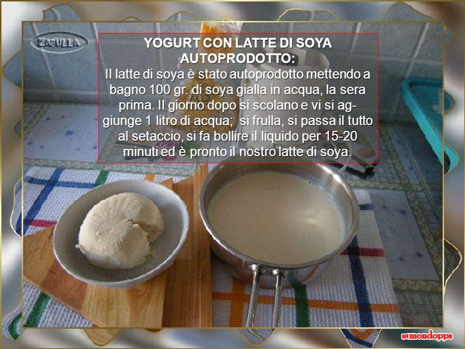 Quale che sia il metodo che pre- ferite, per le preparazioni succes- sive potrete usare due cucchiaiate del vostro yogurt ma, dopo due o tre preparazi