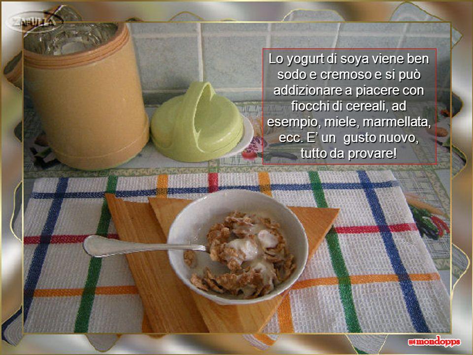 Al latte di soya si aggiungono due cucchiaiate di yogurt di latte (o fermenti vegetali, se non desiderate alcuna presenza di prodotti animali) e si pr