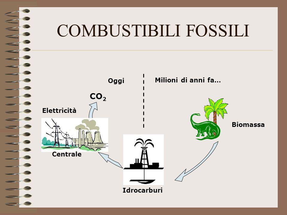 COMBUSTIBILI FOSSILI Milioni di anni fa… Oggi CO 2 Biomassa Idrocarburi Elettricità Centrale