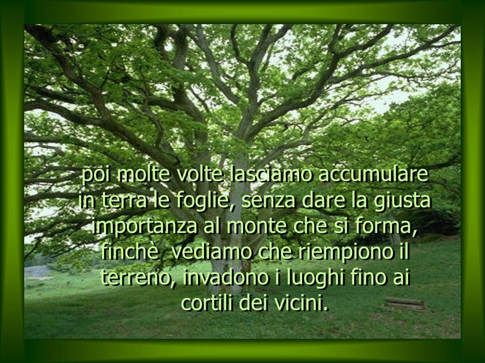 I problemi sono come le foglie di un albero immenso che cadranno sempre, in una maniera o nellaltra, in un ciclo senza fine, ciò che cambia è il modo