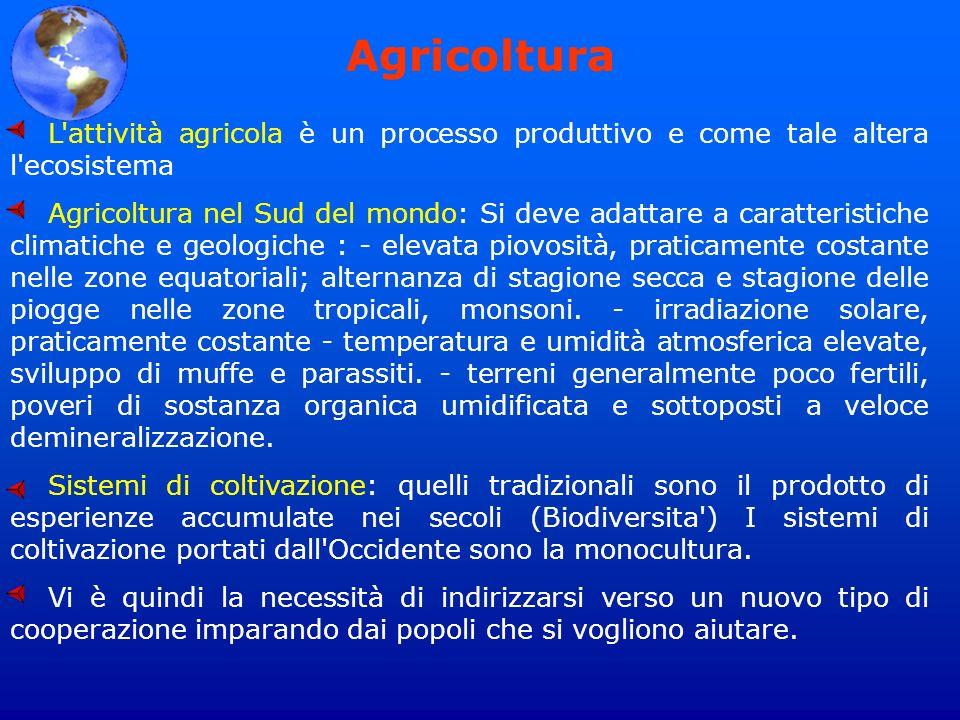 Agricoltura L'attività agricola è un processo produttivo e come tale altera l'ecosistema Agricoltura nel Sud del mondo: Si deve adattare a caratterist