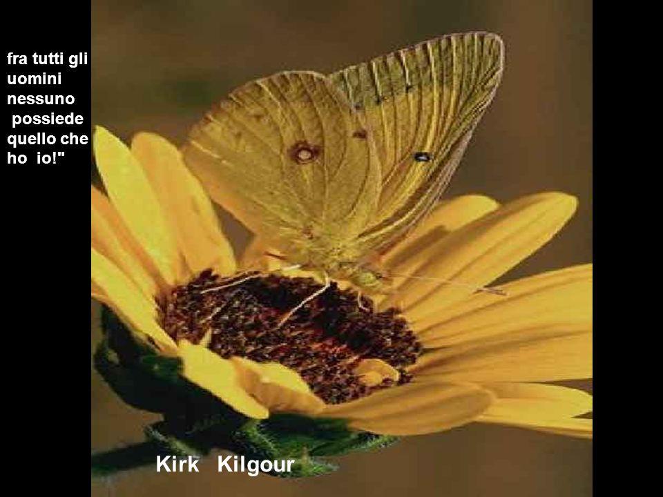 Kirk Kilgour fra tutti gli uomini nessuno possiede quello che ho io!
