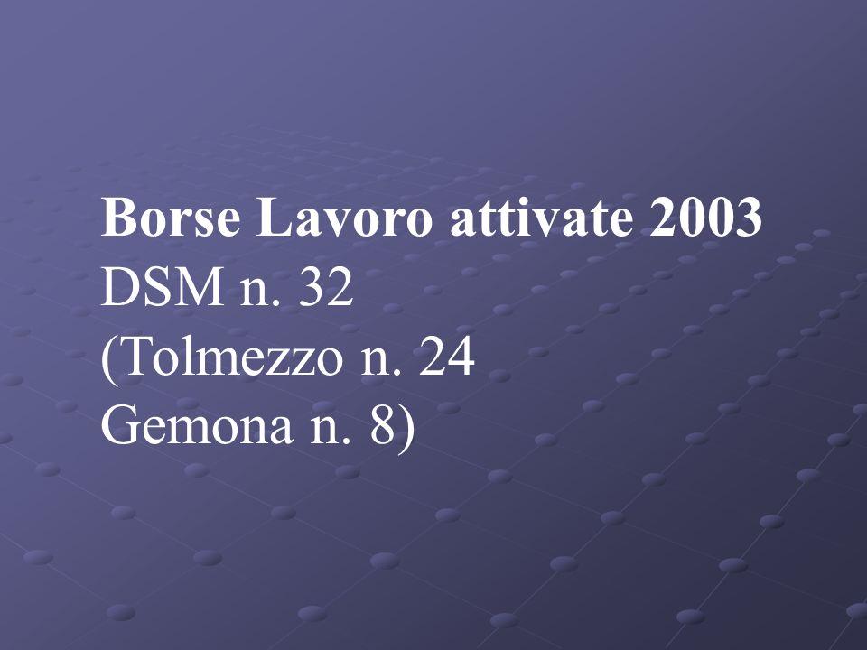Borse Lavoro attivate 2003 DSM n. 32 (Tolmezzo n. 24 Gemona n. 8)