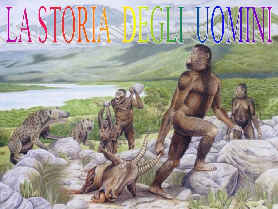 La storia della terra è stata suddivisa dagli storici in ere, cioè in periodi, alcuni dei quali infinitamente lunghi.