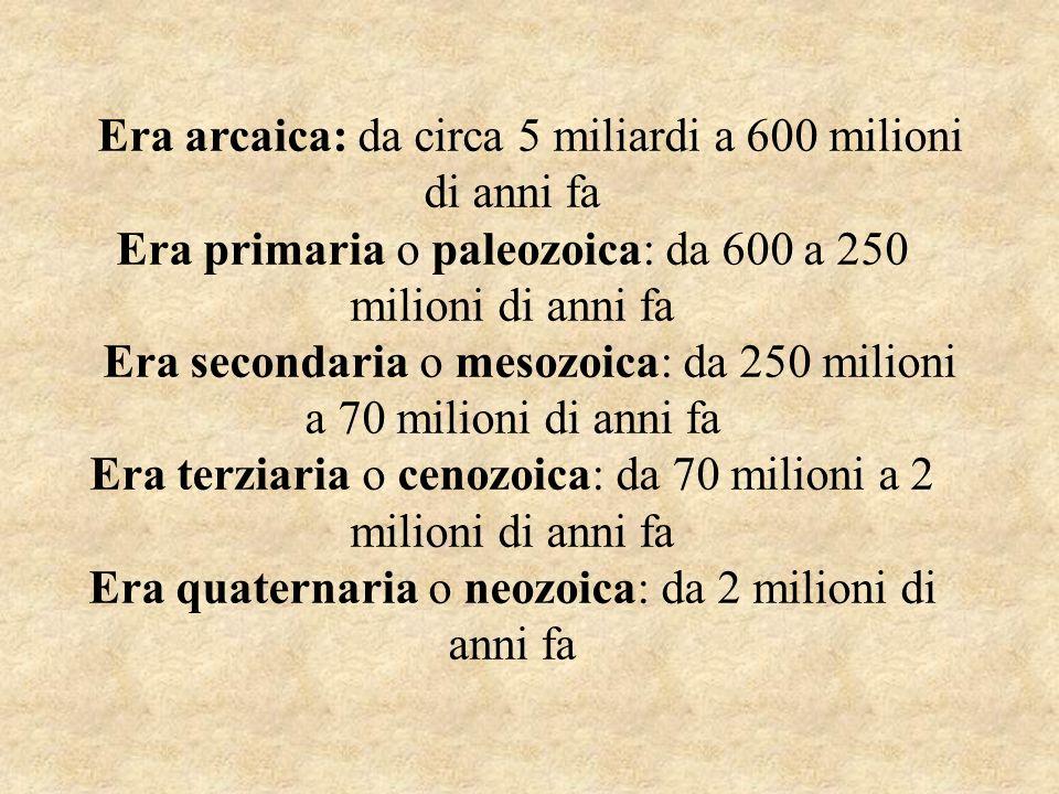 Era arcaica: da circa 5 miliardi a 600 milioni di anni fa Era primaria o paleozoica: da 600 a 250 milioni di anni fa Era secondaria o mesozoica: da 25