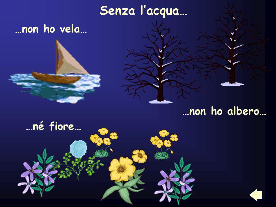 Senza lacqua… …non ho vela… …non ho albero… …né fiore…