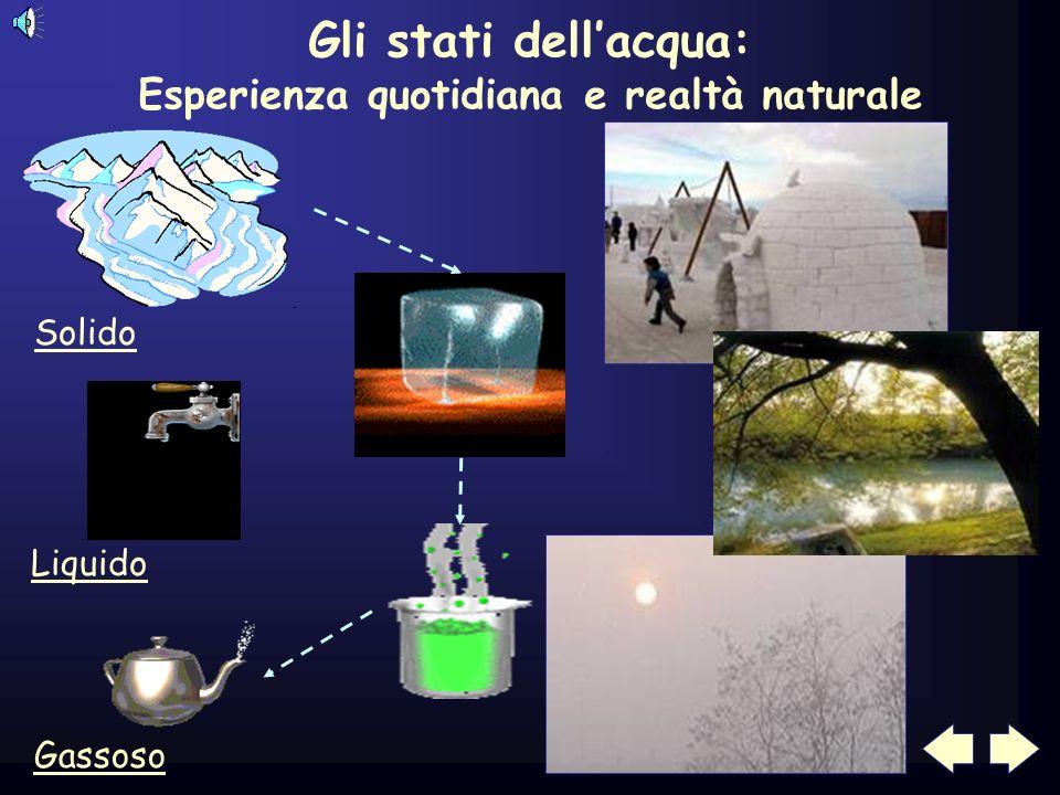 Gli stati dellacqua: Esperienza quotidiana e realtà naturale Solido Liquido Gassoso