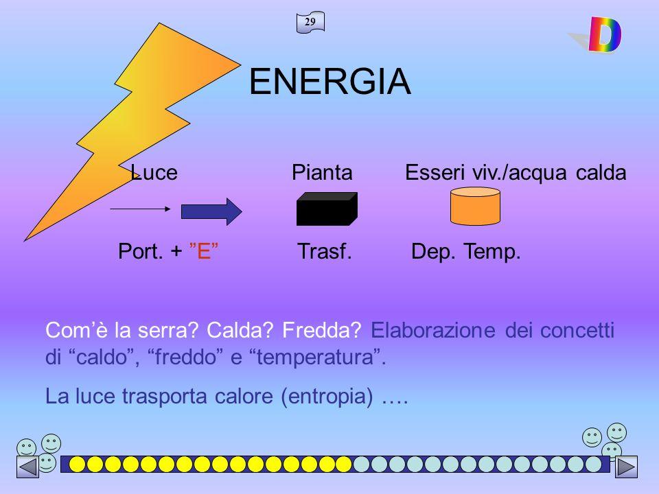 29 ENERGIA Luce Pianta Esseri viv./acqua calda Port.