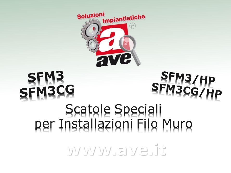 www.ave.it