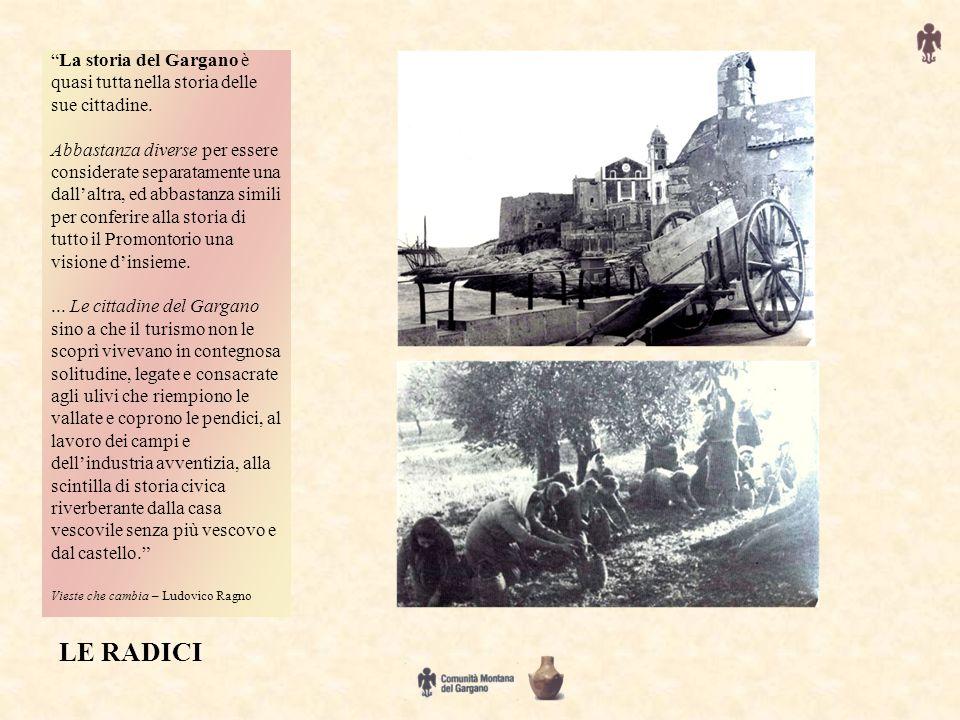 LE RADICI La storia del Gargano è quasi tutta nella storia delle sue cittadine. Abbastanza diverse per essere considerate separatamente una dallaltra,