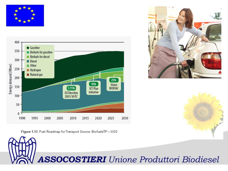 Figure 1.13. Fuel Roadmap for Transport Source: BiofuelsTP – WG3