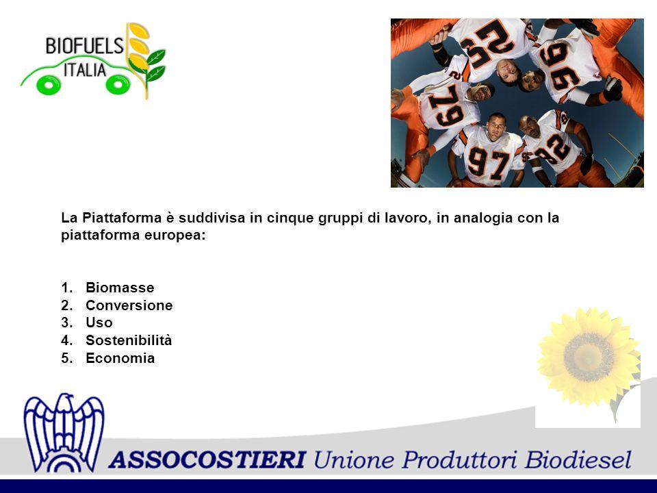 La Piattaforma è suddivisa in cinque gruppi di lavoro, in analogia con la piattaforma europea: 1.Biomasse 2.Conversione 3.Uso 4.Sostenibilità 5.Econom