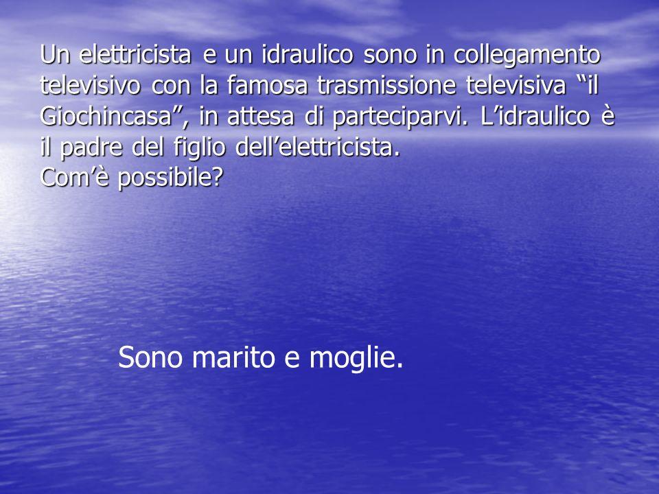 Un elettricista e un idraulico sono in collegamento televisivo con la famosa trasmissione televisiva il Giochincasa, in attesa di parteciparvi. Lidrau