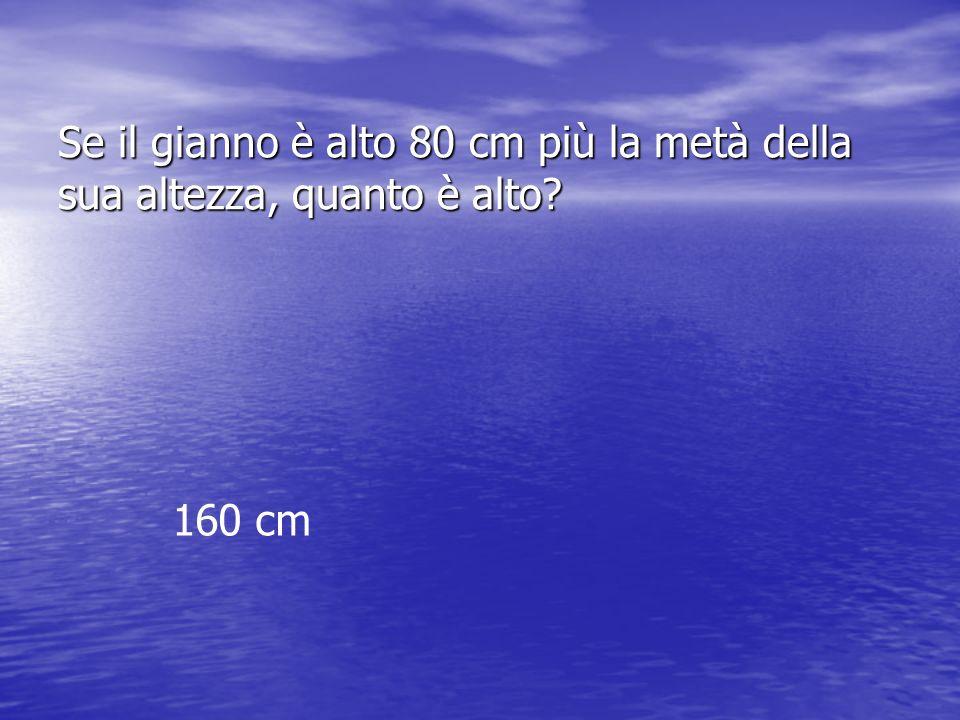 Se il gianno è alto 80 cm più la metà della sua altezza, quanto è alto? 160 cm