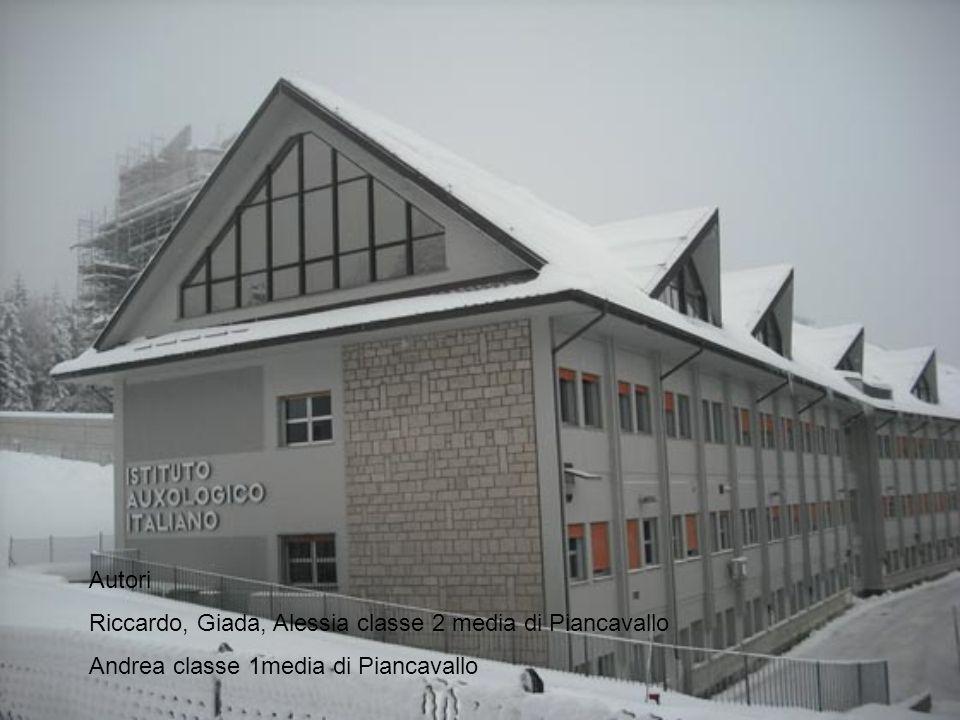 Autori Riccardo, Giada, Alessia classe 2 media di Piancavallo Andrea classe 1media di Piancavallo