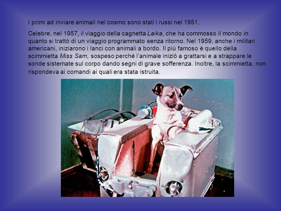 I primi ad inviare animali nel cosmo sono stati i russi nel 1951. Celebre, nel 1957, il viaggio della cagnetta Laika, che ha commosso il mondo in quan