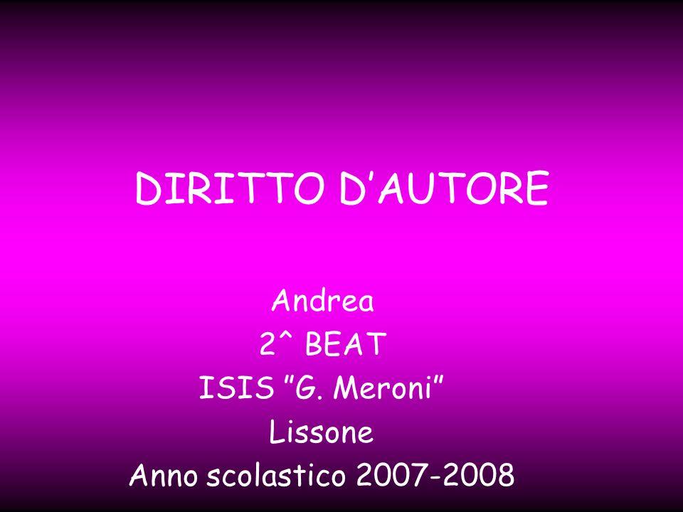 DIRITTO DAUTORE Andrea 2^ BEAT ISIS G. Meroni Lissone Anno scolastico 2007-2008