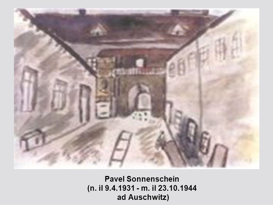 Pavel Sonnenschein (n. il 9.4.1931 - m. il 23.10.1944 ad Auschwitz)