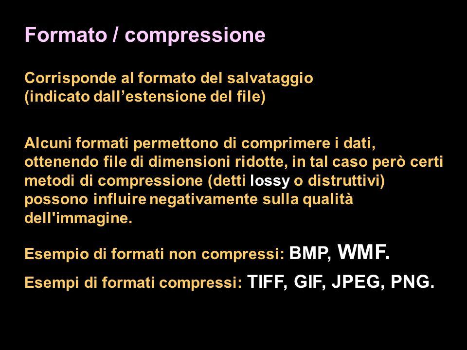 Formato / compressione Corrisponde al formato del salvataggio (indicato dallestensione del file) Alcuni formati permettono di comprimere i dati, ottenendo file di dimensioni ridotte, in tal caso però certi metodi di compressione (detti lossy o distruttivi) possono influire negativamente sulla qualità dell immagine.