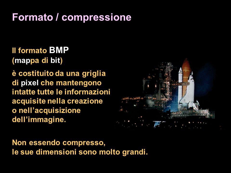Formato / compressione Il formato BMP (mappa di bit) è costituito da una griglia di pixel che mantengono intatte tutte le informazioni acquisite nella creazione o nellacquisizione dellimmagine.